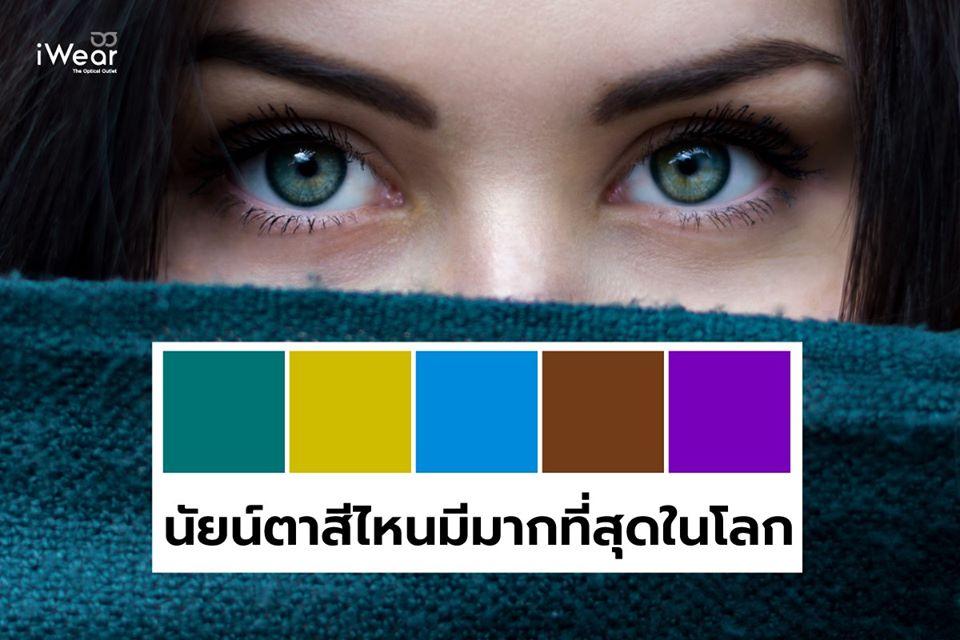 นัยน์ตา สีไหนมีมากที่สุดในโลก